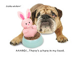 Easter Bunny Bulldog 7x5 Folded Card