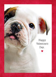 Valentine's Day Puppy 5x7 Folded Card