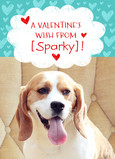 Photo Valentine From the Dog 5x7 Folded Card