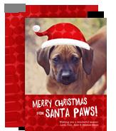 Santa Paws 5x7 Flat Card