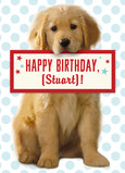 Birthday Retriever Puppy 5x7 Folded Card