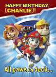 Paw Patrol Birthday - Skye, Marshall, Rubble 5x7 Folded Card