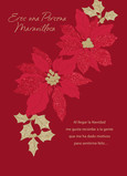 Feliz Navidad - Poinsettias (Spanish) 5x7 Folded Card