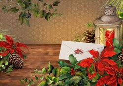 Poinsettia (photo card)
