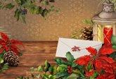 Poinsettia (photo card)