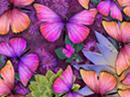 Mother's Day Butterflies Interactive eCards