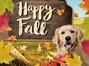 Fall Fun Interactive Autumn eCards