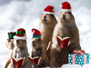Prairie Dog Christmas Singing Video Ecard (Personalize Lyrics) Christmas eCards