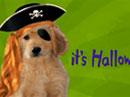 Pirate Puppy Halloween eCards