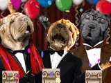 The Three Old Tenors (Fun Song) Birthday eCards