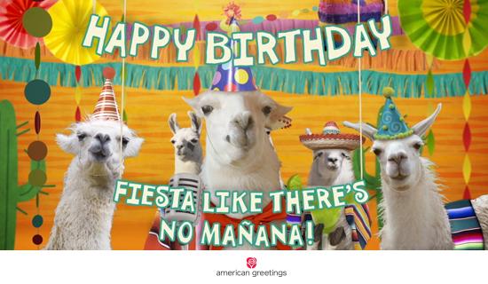 Llama La Bamba Birthday Famous Song Happy Birthday Ecard