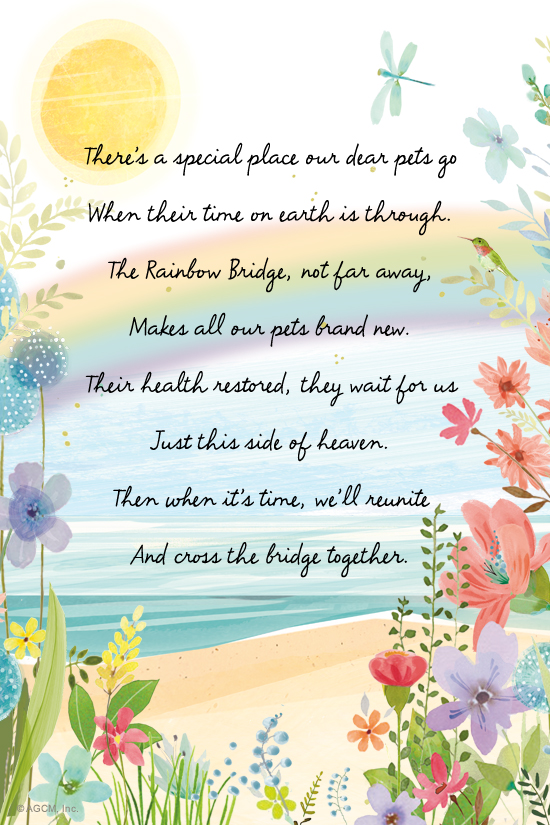 graphic about Rainbow Bridge Pet Poem Printable called Rainbow Bridge Poem\