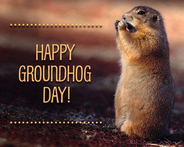 Groundhog Day 2/2