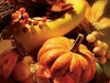 Cornucopia  -- Free Thanksgiving, Holiday Desktop Wallpapers from American Greetings