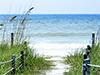Beach Path  -- Free Beach, Nature Desktop Wallpapers from American Greetings