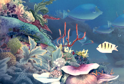 Aquatic Harmony