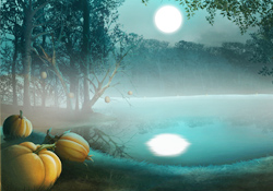 Moonlit Magic JL Video Add-on