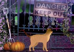 Scaredy Cat JL Video Add-on