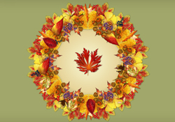 Autumn Kaleidoscope JL Video Add-on