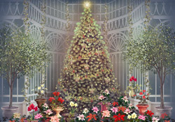 Christmas Greenhouse JL Video Add-on