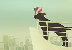 USA or Bust!