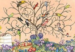 Avian Arbour