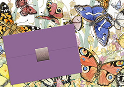 Placeholder Title- Butterfly Notecard