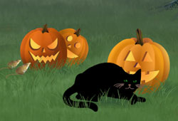 Feline Fright