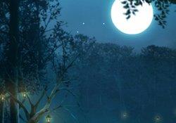 Clair de Lune (Birthday)