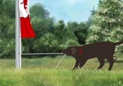 Raise the Flag (Canada)