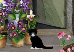 The Florist