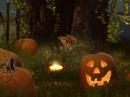 Bewitched Halloween Halloween eCards