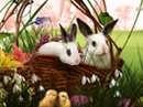 Happy Easter! Easter eCards