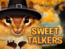 Chatty Chipmunk Sweet Talker Thanksgiving eCards