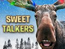 Chrismoose Sweet Talker Christmas eCards