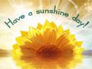 Sunshine Day Postcard Summer Postcards