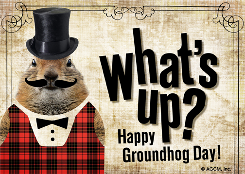Groundhog day groundhog day ecard blue mountain ecards about postcards m4hsunfo