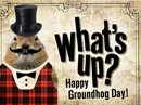 Groundhog Day Groundhog Day eCards