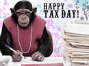 Tax Day Tax Day eCards