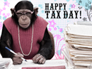 Tax Day Postcard Tax Day eCards