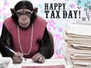 Tax Day Tax Day eCards
