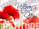 Veteran's Day Gratitude Veterans Day eCards