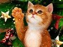 Gift of Time Christmas Postcards