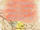Family Tree Quote Postcards