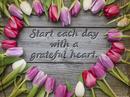 Grateful Heart Quote Postcards