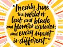Summer Poem Summer eCards