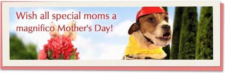 Wish all special moms a magnifico Mother's Day!