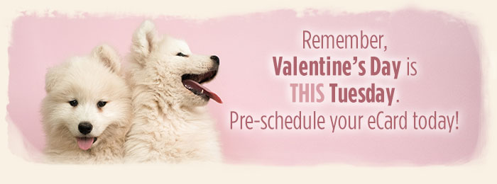 Valentine's Day eCards - Schedule Ahead