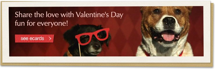 Share the love with Valentine's Day fun for everyone! See Valentine's Day Ecards
