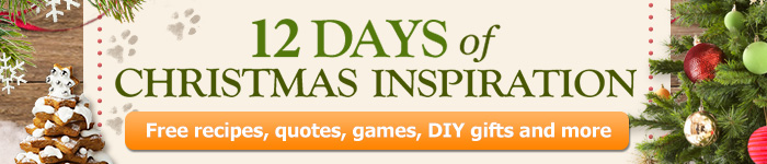 12 Days of Christmas Marketing Banner